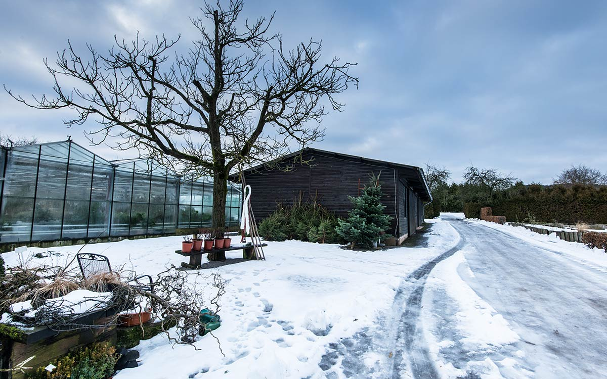 414-conzentrat-duesseldorf-weihnachten-in-der-graeflichen-gaerztmerei